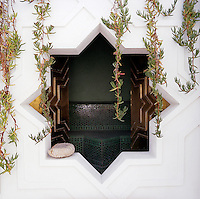A star-shaped window opens into the wet room and is delicately framed by hanging succulents