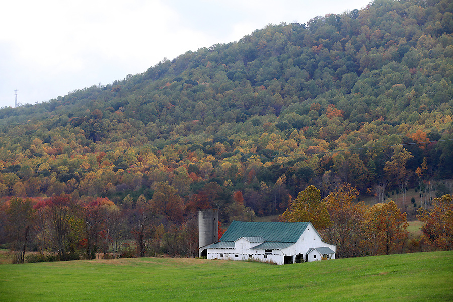 Farm in Albemarle County, VA. Photo/Andrew Shurtleff