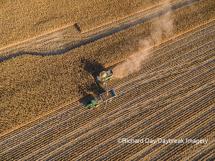 63801-08318 Corn Harvest, John Deere combine unloading corn into grain cart while harvesting - aerial Marion Co. IL