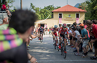 Maxime Monfort (BEL/Lotto-Soudal) up the Foza climb (1086m)<br /> <br /> Stage 20: Pordenone › Asiago (190km)<br /> 100th Giro d'Italia 2017