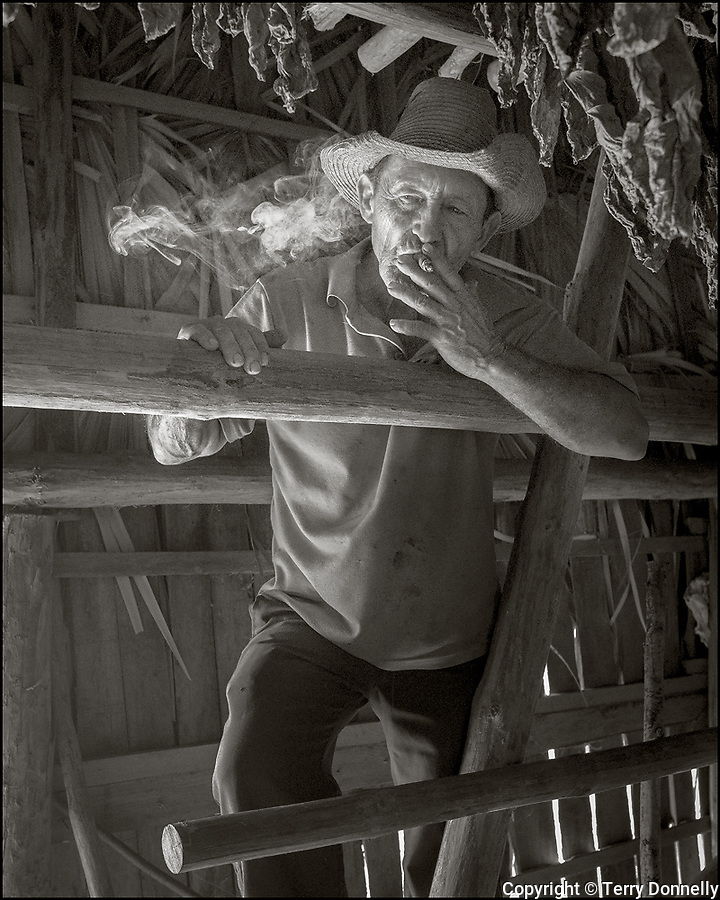 Vinales, Cuba:<br /> Tobacco farmer with cigar in his drying barn near Vinales