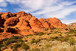 Snow Canyon State Park, Utah, UT, scenic of Red Kaibab sandstone with yellow saltbrush vegetation, rock formation, landform, arid, Southwest America, American Southwest, US, United States, Image ut407-18599, Photo copyright: Lee Foster, www.fostertravel.com, lee@fostertravel.com, 510-549-2202
