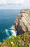 Sheer cliffs rise from Atlantic Ocean at Cabo de São Vicente, Cape St Vincent, Algarve, Portugal with wildflowers on the edge