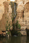 Israel, Negev. The waterfall at Ein Avdat national park in Wadi Zin