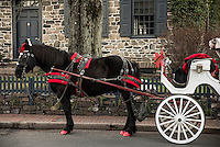 Holiday horse drawn carriage rides, New Hope, Pennsylvania, USA