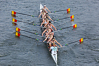 Crews 321+ (Women's Eights)
