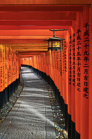 a lantern along the miles and miles of walkways in the Fushimi Inari Shrine in Koyoto.