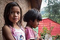 SAO PAULO, SP, 09.11.2013. ANIMAIS ABANDONADOS NA ALDEIA GUARANI TEKOA PYAU.  Crianças indígenas vivem em situação de extrema pobreza na aldeia guarani Tekoa Pyau . Os índios e os animais abandonados  sobrevivem graças a doações e ajudas. Cerca de 160 famílias, aproximadamente 800 índios vivem na Aldeia que fica localizada na entrada do Pico do Jaraguá, zona oeste da capital paulista. . (Foto:Adriana Spaca/Brazil Photo Press)