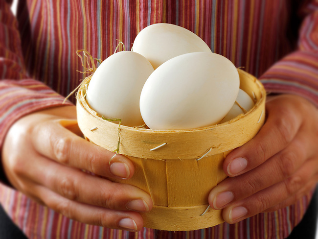Fresh organis free range duck Eggs
