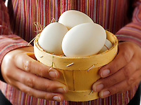 Fresh organis free range duck Eggs