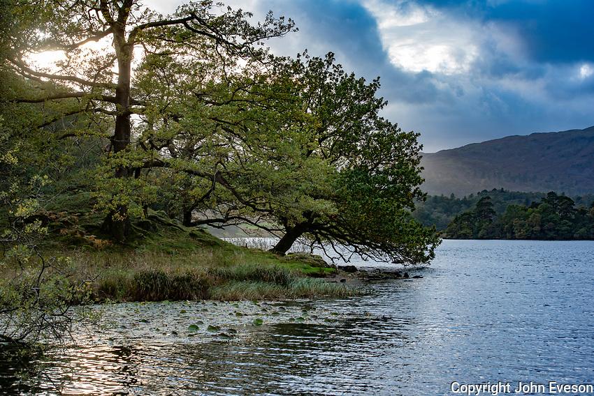 Rydal water, Lake District, Cumbria.