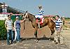 Danalake winning at Delaware Park on 7/4/12