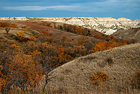 Morning light lights up a butte and a autumn colored draw at Theodore Roosevelt National Park in North Dakota