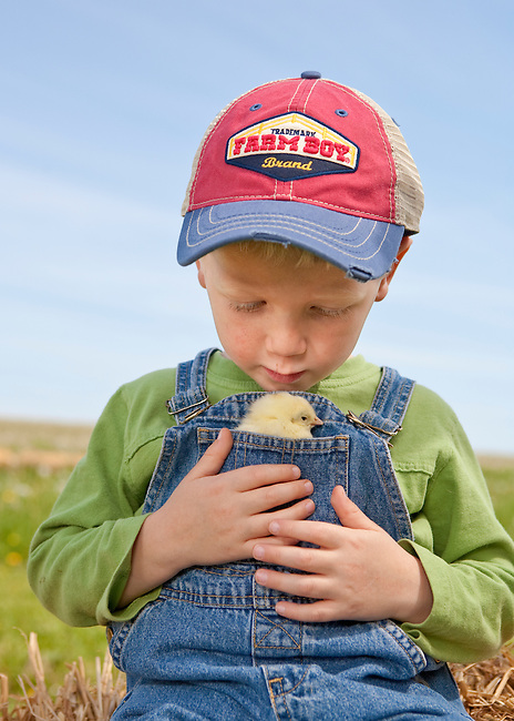 Portrait of boy 3-6 years in ball cap looking down at White Rock chick in front pocket of overalls