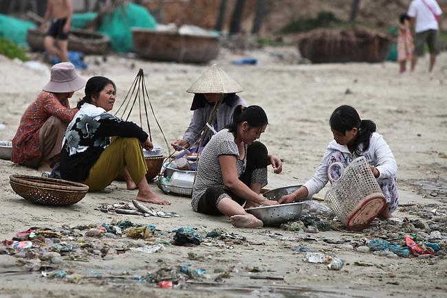 Women sort through the morning's catch on the beach in Mui Ne, Vietnam. Nov. 20, 2011.