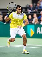 11-02-13, Tennis, Rotterdam, ABNAMROWTT, Jo-Wilfried Tsonga
