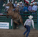 """Ryan Mackenzie from Homedale, ID competes in the Saddle Bronc Riding event during Purple Night at the Rodeo on Tuesday night, June 21, 2016.  """"Man Up Crusade Night"""" encouraged rodeo goers to wear purple for advocacy to stop domestic violence."""