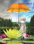 PAUL,REALISTIC ANIMALS, REALISTISCHE TIERE, ANIMALES REALISTICOS, paintings+++++NW_Fruit-Cat-C,USLGNW04,#a#, EVERYDAY ,funny photos