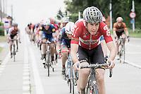 Jelle Wallays (BEL/Lotto-Soudal)<br /> <br /> 1st Dwars door het Hageland 2016<br /> (pics by L&eacute;on Van Bon)