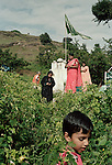 A family stops at a road-side shrine to lay wreaths and flowers