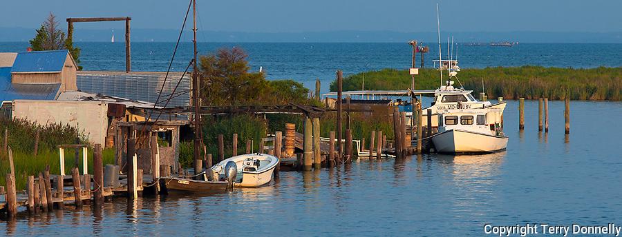 Tilghman Island, Maryland<br /> Morning sun on fishing boats  docked along Knapp's Narrows, Chesapeake Bay in the background