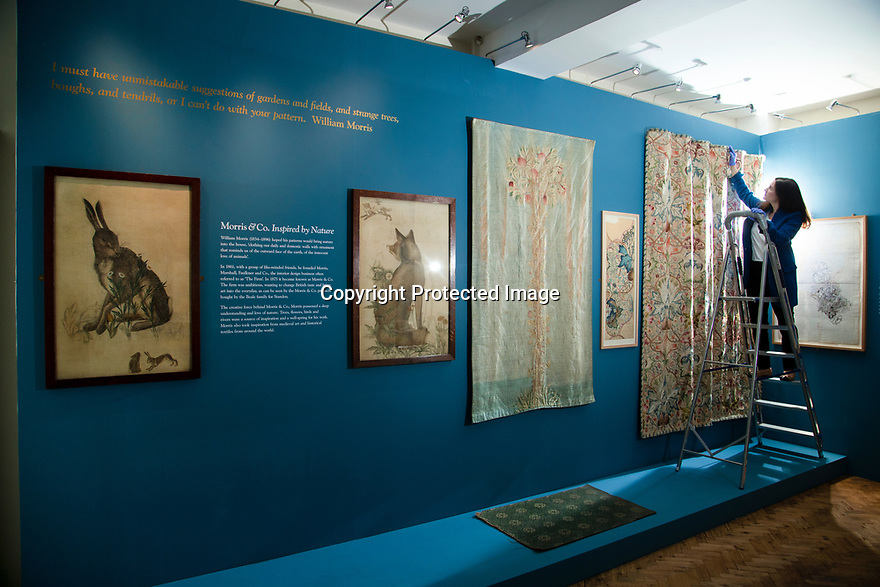 29/05/15<br /> <br /> Curator Dr. Alice Strickland mounting Artichoke embroidery.<br /> <br /> Morris & Co. Inspired by Nature at Standen House and Garden, the National Trust's Arts and Craft House in East Grinstead, West Sussex delves in to the World of Morris & Co. Discover how repeating patterns of flowers and birds were chosen for the designs and the value that Morris placed on the revival of traditional skill. 1 Jun - 10 Nov 2019.<br /> <br /> All Rights Reserved: F Stop Press Ltd. +44(0)1335 418365   +44 (0)7765 242650 www.fstoppress.com