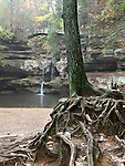 Tree Roots, A Foot Bridge And One Of Three Waterfalls In Old Man's Cave, The Hocking Hills Region Of Central Ohio, USA : Low Res File - 8X10 To 11X14 Or Smaller, Larger If Viewed From A Distance