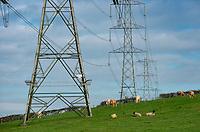 Electricity pylons at Five Lane Ends, Lancaster, Lancashire.