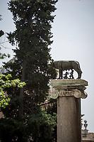 ITA - Il simbolo della Città di Roma, la Lupa in bronzo posta in Campidoglio. ENG - Municipal elections will be held in Rome on 5 June 2016. In the photo the Capitoline Wolf, the Rome Symbol in the Capitoline Hill. Rome, 28 may 2016. Adamo Di Loreto/BuenaVista*photo