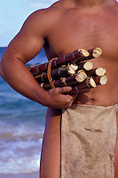 Man in loin cloth carrying stalks of sugar cane, a reenactment of the early Hawaiian migration from Tahiti when animals and crops were transported