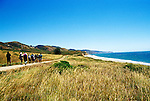 California: Marin County.  Hikers in Point Reyes near ocean.  .Photo copyright Lee Foster, 510/549-2202, lee@fostertravel.com, www.fostertravel.com..Photo # camari105