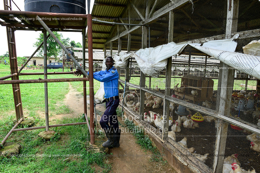NIGERIA, Oyo State, Ibadan, chicken coop, keeping of layer hen for egg production /Legehennenhaltung fuer Eierproduktion