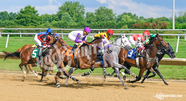 Laster at Delaware Park on 7/6/15