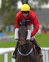 Shimba Hills ridden by Aden Coleman and trained by Lawny Hill during Horse Racing at Plumpton Racecourse on 4th November 2019