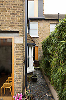 The small rear garden of the house with the mansard loft extension just seen above.