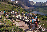 AJ3608, Glacier National Park, lake, Montana, Rocky Mountains, overlook, Waterton-Glacier International Peace Park, Montana, A group of tourist stand on an overlook looking at the picturesque view of Hidden Lake and the mountains in Glacier National Park in the state of Montana.