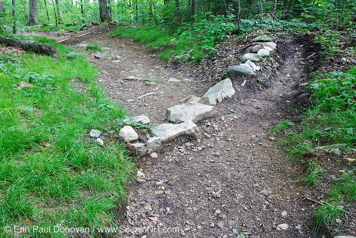Low impact water bar along the Veterans Trail in Franconia, New Hampshire USA. This trail was previously known as the Bald Mtn - Artist's Bluff Path.