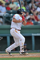 Second baseman Chad De La Guerra (20) of the Greenville Drive bats in a game against the Augusta GreenJackets on Thursday, June 9, 2016, at Fluor Field at the West End in Greenville, South Carolina. Augusta won, 8-2. (Tom Priddy/Four Seam Images)
