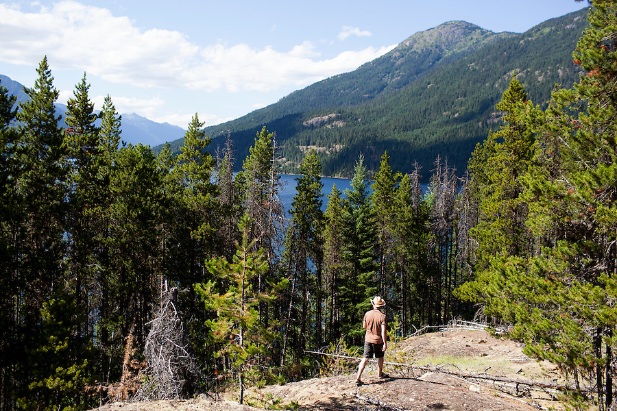 One man walks in a forest of ponderosa pine, looking north towards desolation peak at Ross Lake, WA, USA.