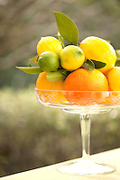A selection of oranges, lemons and limes on a tall glass stand