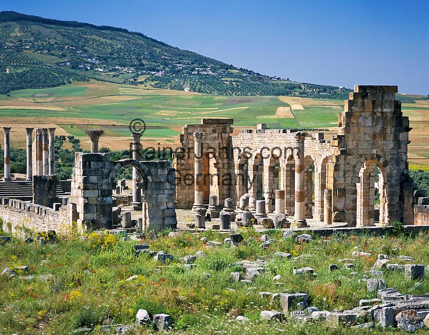 Morocco, Meknès-Tafilalet, near Meknes in northern Morocco: Roman ruins at Volubilis, UNESCO World Cultural Heritage | Marokko, Meknès-Tafilalet, bei Meknes im noerdlichen Marokko: archaeologische Ausgrabungsstaette Volubilis, UNESCO-Weltkulturerbe