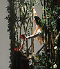 London, UK. 25.03.2016. balletLORENT's Snow White opens at Sadler's Wells Theatre for the Easter family weekend. Photo shows: Natalie Trewinnard, Gwen Berwick. Photo - © Foteini Christofilopoulou.