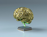 Gold brain on top of central processing unit