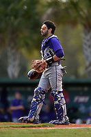 Kentucky Wesleyan Panthers catcher Josh Galvan (23) during a game against Slippery Rock University on March 9, 2015 at Jack Russell Stadium in Clearwater, Florida.  Kentucky Wesleyan defeated Slippery Rock 5-4.  (Mike Janes/Four Seam Images)