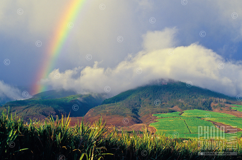 A rainbow over the West Maui Mountains above Lahaina and sugarcane fields. The Lahaina sugar industry and mill shut down around 2000.