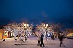 Aspen Winter at Night