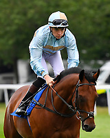 Swanton Blue ridden by Callum Shepherd goes down to the start during Ladies Evening Racing at Salisbury Racecourse on 15th July 2017
