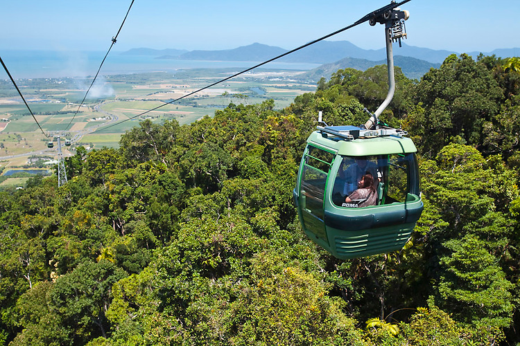 Skyrail Rainforest Cableway.  Cairns, Queensland, Australia