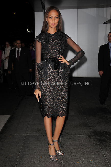 WWW.ACEPIXS.COM . . . . . .November 15, 2011...New York City....Joan Smalls attends the Museum of Modern Art's 4th Annual Film benefit 'A Tribute to Pedro Almodovar' at the Museum of Modern Art on November 15, 2011 in New York City....Please byline: KRISTIN CALLAHAN - ACEPIXS.COM.. . . . . . ..Ace Pictures, Inc: ..tel: (212) 243 8787 or (646) 769 0430..e-mail: info@acepixs.com..web: http://www.acepixs.com .