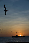two frigates at sunset, a bird and a ship in the pacific ocean near san cristobal galapagos ecuador